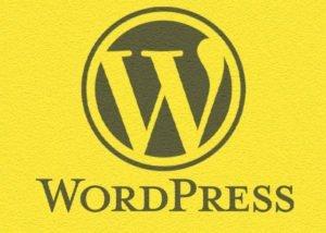 WordPress Website Design & Maintenance - SEO Hampshire