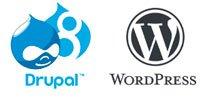 Drupal & Wordpress Build Support & Maintenance Service - SEO Hampshire